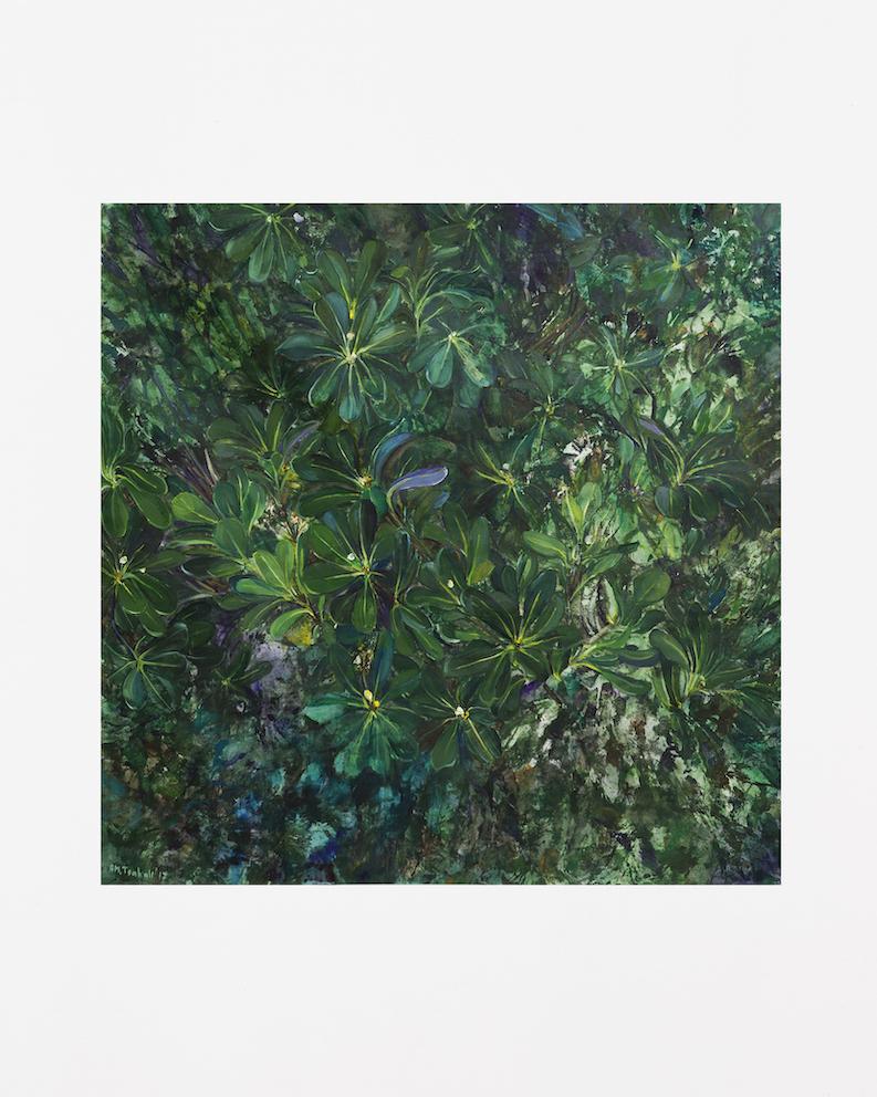 Jardin I, 2017, huile sur toile et Tempera, 80 x 80 cm