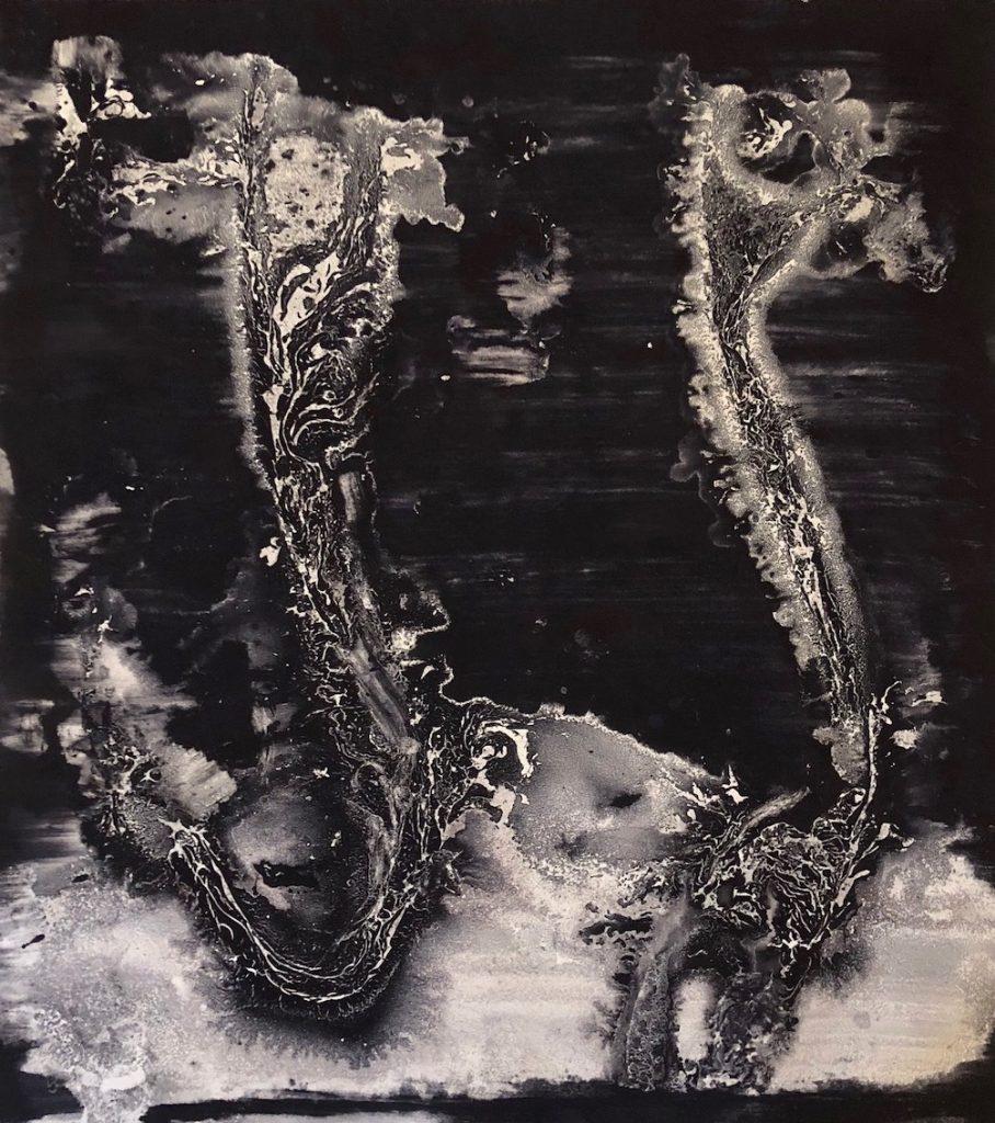 Flowers 112, huile sur papier, 76 x 57 cm, 2017